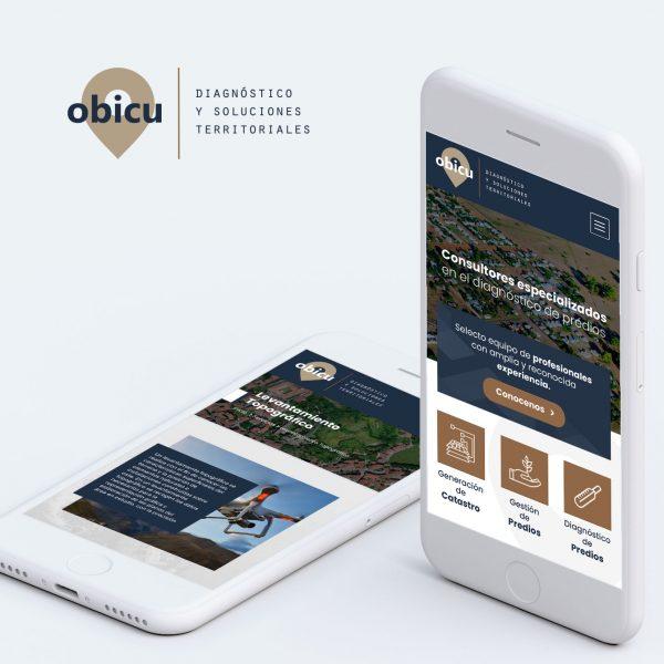 Diseño de Página Web en Arequipa para Empresa de Consultoría